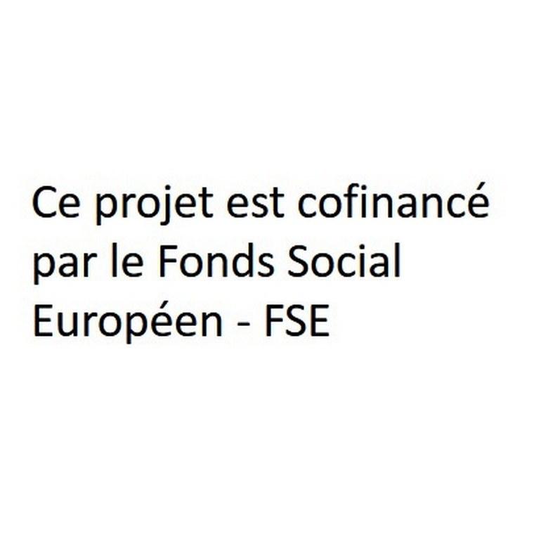 Mention projet FSE